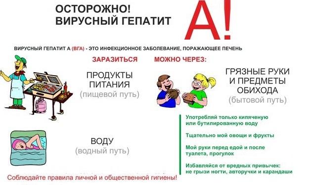 listovka-profilaktika-gepatita-a2